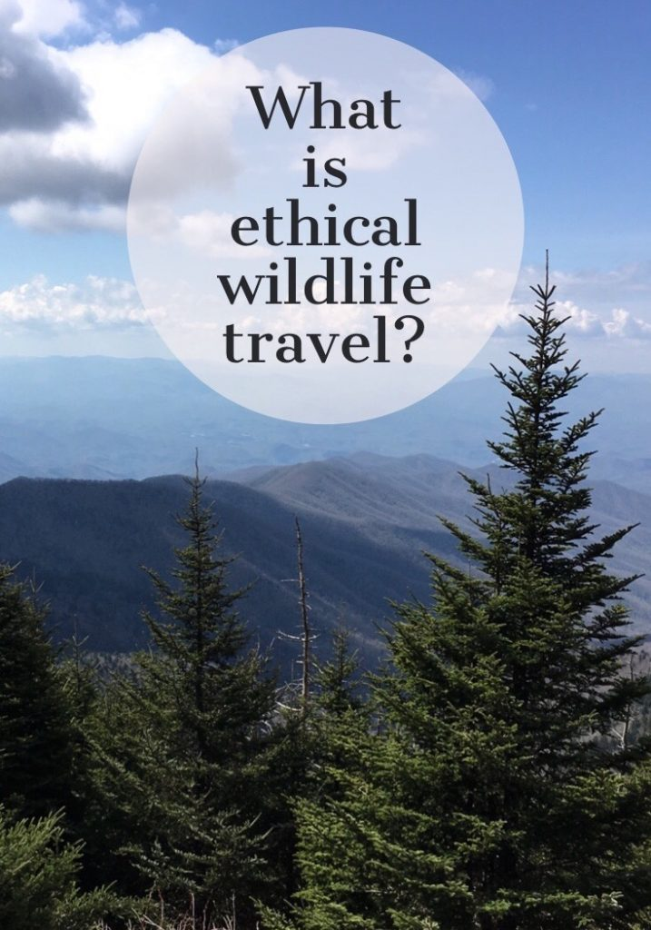 what is ethical wildlife travel